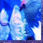 Image/shop/zbo548.jpg